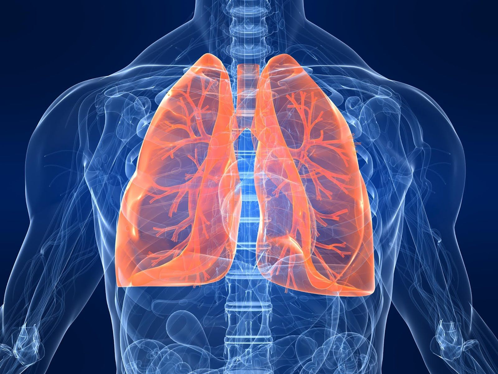Tüdőátültetés