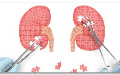 Vesetranszplantációs Várólista